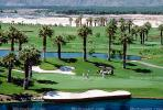 sand trap, water hazard, lake, golfer, golf cart, trees, Palm Desert, California