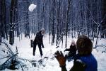 snowball fight in the forest, Washington Island, SKFV01P02_01