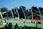 Strong Wind, Flags, People, Crowds, Field, Opening Day, Crissy Field, Celebration, May 6, 2001, SKTV01P13_19