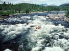 Rapids, River, Whitewater, vibrant river