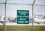 Birds Are Hazardous to Airplanes - DO NOT ATTRACT BIRDS BY FEEDING THEM, TAAV11P05_13