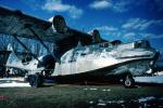a dying PBY-5