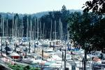 Crowded Docks, Marina, West Vancouver Yacht Club, TSCV07P10_02