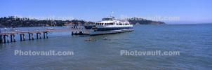 Golden Gate Ferry, Ferry, Ferryboat, Sausalito, Panorama, Angel Island, Belvedere