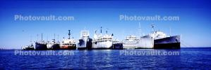 National Defense Reserve Fleet, Suisun Bay, Panorama, TSQV01P03_03