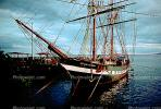 The Carthaginian, square rigger replica whaling ship, Lahaina, Maui, TSTV01P04_03.1719