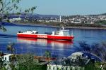 Cabot, Oceanex, Ro-ro Cargo, St. Lawrence River, RedHull, redboat, IMO: 7700051, TSWV05P01_12
