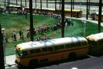 Students waiting in line, children, kids, palm trees, lawn, buses, VBSV02P14_10