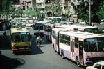 Crowded with Buses, VBSV03P09_17