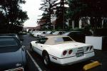 Corvette, Stingray, Chevy, Chevrolet, VCCV01P10_19