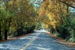 country road, Pleasanton, VCRV01P11_17.0898