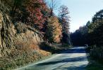 Fall Colors, Autumn, Deciduous Trees, Woodland, Highway, Roadway, Road