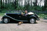 Morris Garage, Dachshund, Wiener Dog, Roadster, small dog breed, 1950's