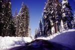 snow, arrow, direction, directional, Ice, Cold, Frozen, Icy, Winter, Tree Lined Road, Highway, VCRV10P07_01