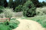 Dirt Road, Occidental, Sonoma County, California, unpaved
