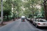 City Street, Tree Lined Road, VCRV12P14_15