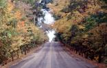 Highway, Road, Fall Colors, autumn