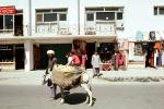 Shops, Buildings, Donkey