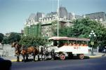 Horse Drawn Tourist Carriage, Canada, 1950s