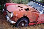Rusting Car, Rust, Sonoma County