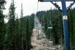 Pylon 3, Chairlift, Colorado, Summertime, Summer, Forest, Trees, VGTV02P01_13