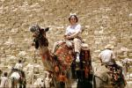 Woman Riding on a Camel, Great Pyramid of Cheops