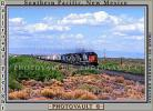 SP 8362, SP 7379, SP 8336, Southern Pacific, Diesel Locomotive, southern New Mexico, USA, VRFV03P12_12