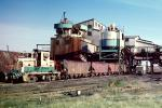 Locomotive #805, Macon County Bee-Veer Mine, Peabody Coal Company, hoppers, 1979, 1970s