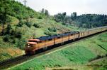 Southern Pacific, Diesel Electric, Locomotive, trainset, ALCO PA-1 A-B-A, Sunset Limited ?, hills, track, forest, trees, 1950's