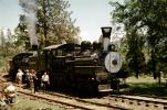 Feather River Railway, Shay #2, class C Shay, June 1963