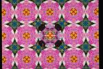 Quilt Pattern, Quilt Patches, WGBV02P05_07.3287