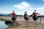 Ostrich Racing, Bareback Riding