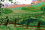 Cows, Rose Avenue, Cotati, Sonoma County, Eucalyptus, Psychedelic, psyscape, ACFPCD0656_095B