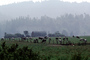 Barn, Hills, Dairy Cows, Grass, Grazing, trees, fields, Fernwood, Humboldt County, ACFV01P11_16