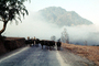 Mountains, cows, fog, road, Nepal, ACFV03P12_01