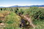 Fence, Stream, Klamath, Oregon
