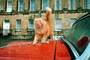 Royal  Crescent Hotel cat, Bath England