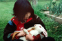 Girl Feeds Carrot to a Rabbit, Occidental, Sonoma County