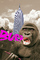 Cartoon, Burp, King Kong indigestion, AMPV01P04_08