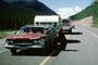 Plymouth Stationwagon, trailer, Feeding the Bear, Dangerous Behavior, cars, bus, 1950's, AMUV01P12_19