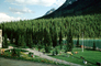 Lake Louise, Mountains, Forest, Lawn, Path, Flowers, Banff, Woodland, Trees, CCAV01P07_01