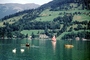 Zell am See, Alps, lake, water, river, swans, rowboat, sailboat, craft, mountains, nature, trees, CEAV02P02_02