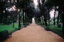 Path, Park Bench, Trees, Rome, CEIV06P03_10