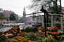 Flowers, Canals, Waterway, Garden, Amsterdam