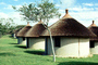 Round Huts, Garden, Tree, roundhouse, Thatched Roof House, Home, Grass Roofs, building, CKFV01P02_13