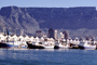 Victoria Wharf, Table Mountain, Docks, Waterfront, Buildings, Homes, Cape Town, Building, CKFV01P07_11