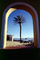 Palm Tree, Sand, Beach, Arch, Building, Cape Town, CKFV01P09_02