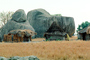 Thatched Roof Houses, Homes, Grass Roof, buildings, roundhouse, desert, boulders, building, Sod, CKZV01P03_05