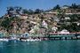 Homes, Houses, bluffs, buildings, docks, pier, boats, Avalon, Harbor, CLAV06P14_18