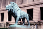The Art Institute of Chicago, Lion statue, statuary Sculpture, art, artform, bronze, patina, CLCV05P10_15